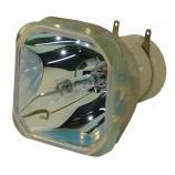 Sony VPL-DX240/VPL-DX270/VPL-DW240/VPL-DX220/VPL DX240/VPL DX270/VPL DW240 Projector Lamp Bulb LMP-D214